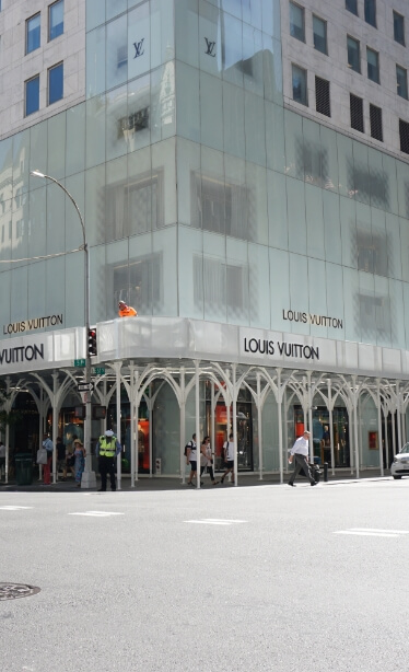 Louis Vuitton Home Page Image